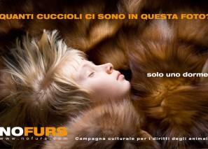 No Furs